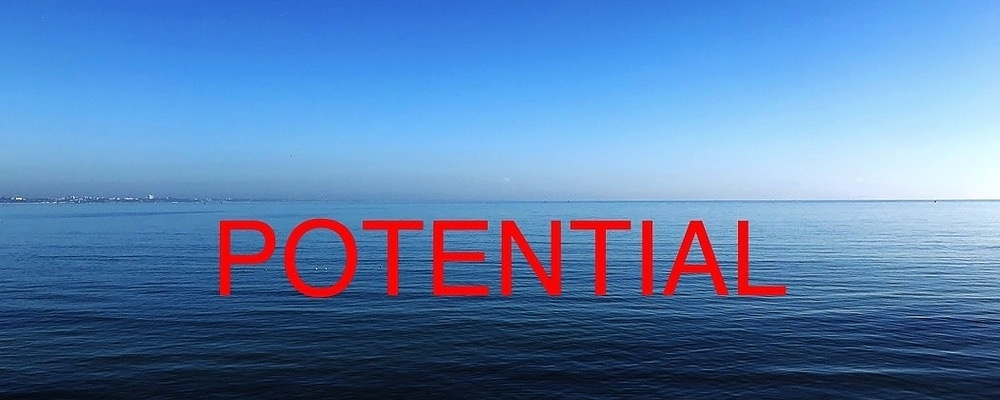 WORKSHOP 2 - Activate Your Innate Potential Event Banner