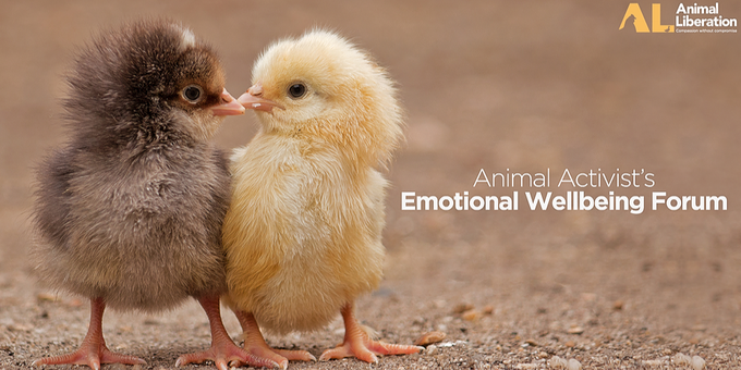 Activist's Emotional Wellbeing Forum Event Banner