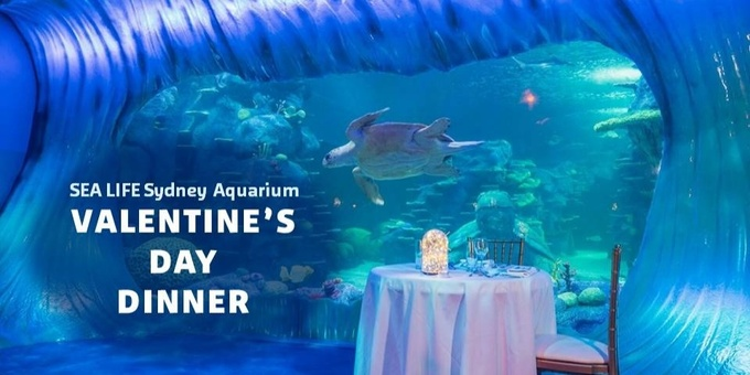 Valentine's Day - SEA LIFE Sydney Aquarium Event Banner