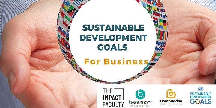 Understanding Sustainable Development Goals for Business Event Banner