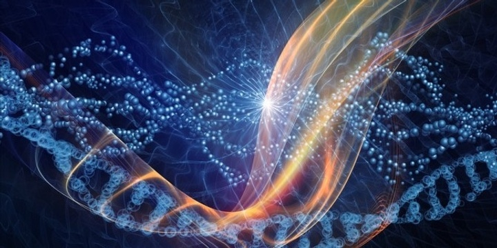 WEBINAR  From Fear-Based Patterns to the Most Inspiring Possibilities in our DNA Event Banner
