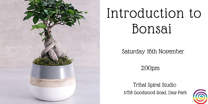 Introduction to Bonsai Event Banner