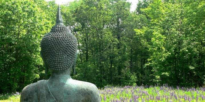 Walking the Buddha's path to freedom: 5-day study-and-practice retreat Event Banner