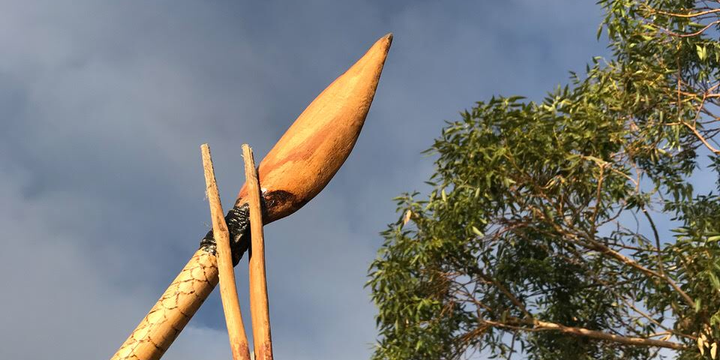 Children's & Adults Workshop / Boomerang making  & Traditional Spear making with NURA GUNYU @ Illawarra Festival of Wood 2019 Event Banner