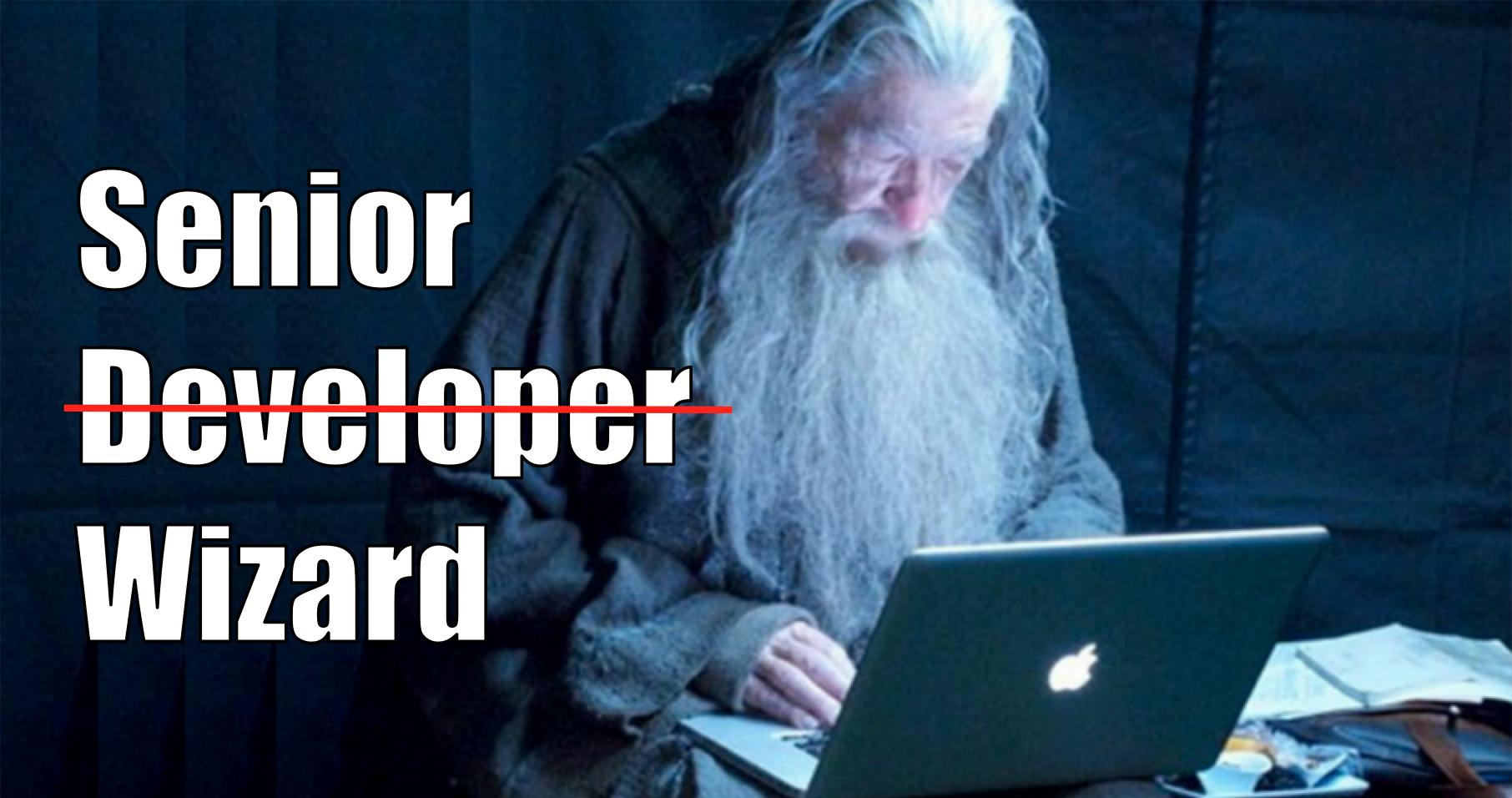 senior developer wizard