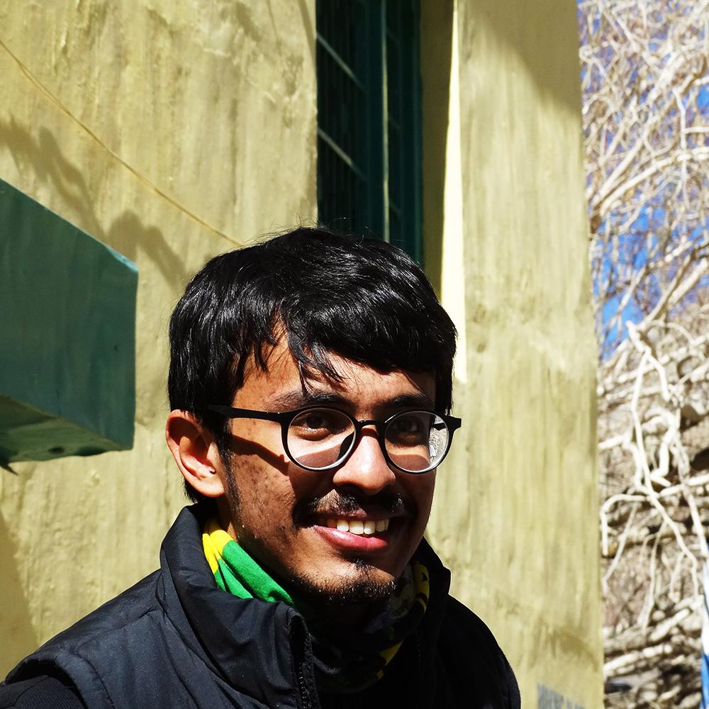 R Shiny mentor, R Shiny expert, R Shiny code help