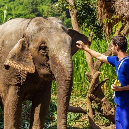13-day Thailand to Laos Tour