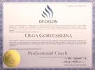 Международный эриксоновский университет коучинга, Профессиональный коуч, 2012-2012 годы