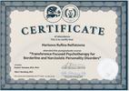 Институт Практической Психологии и Психоанализа, Психотерапия в лечении пограничных и нарциссических расстройств (международный сертификат), 2018-2019 годы