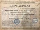 Московский институт процессуальной психотерапии и консультирования, Основы процессуальной психотерапии, 2009-2011 годы