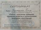 Москвоский институт процессуально-интегративной терапии, Работа с шоковыми травмами развития и хроническими телесными симптомами, 2013-2014 годы