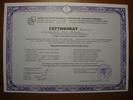 Московский Гешталь Институт, гештальттерапевт, 2004-2008 годы