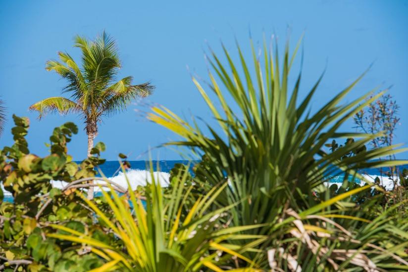 Beach Living at Villas Pappagallo (BLPT)