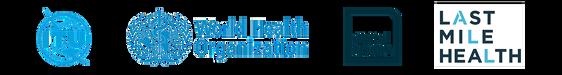 Digital Health: Planning National Systems Logo