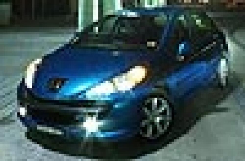 Peugeot 206 Rough Idle