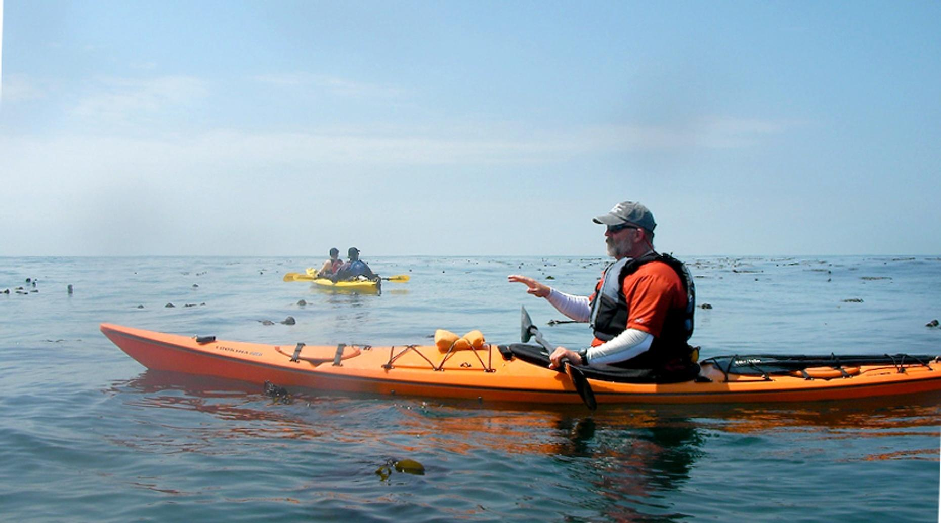 Single-Person Sea Kayak Rental in Safety Harbor