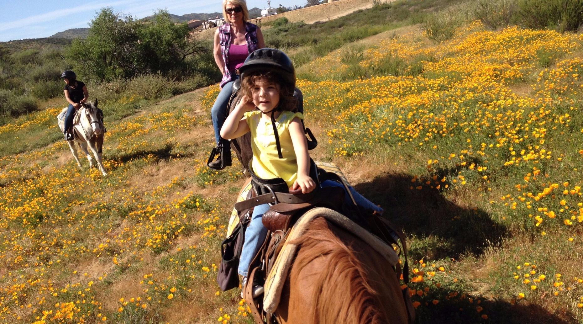 1-Hour Temecula and Murrieta Horseback Ride