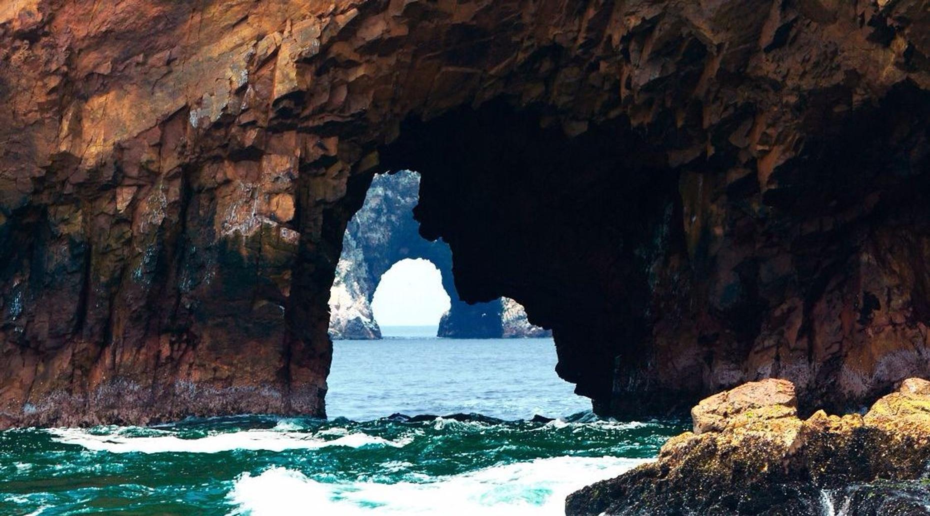Ballestas Islands Wildlife Tour in Paracas