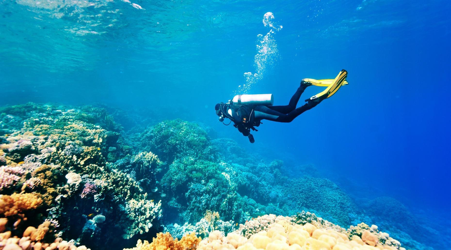 Scuba Diving Adventure in Los Anegados