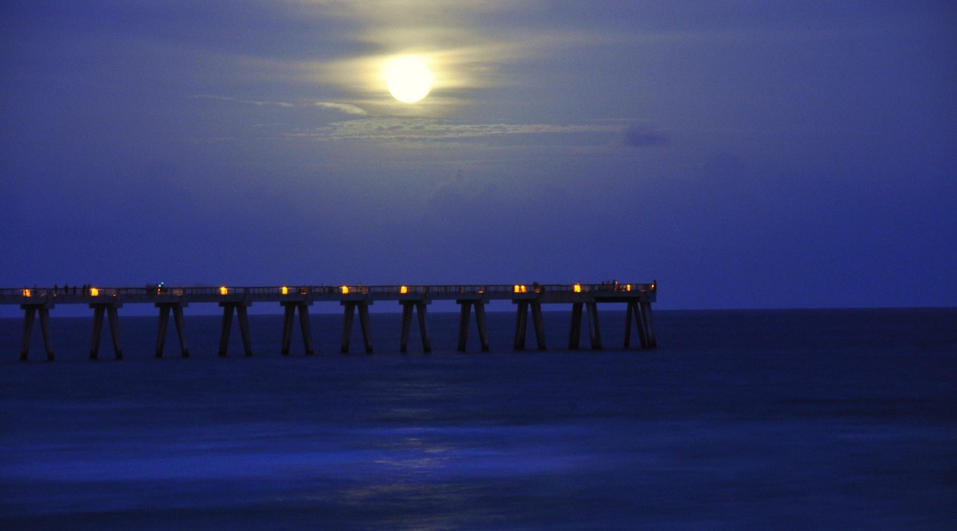 Night-Time Riverwalk & Bridges Cruise in Sarasota