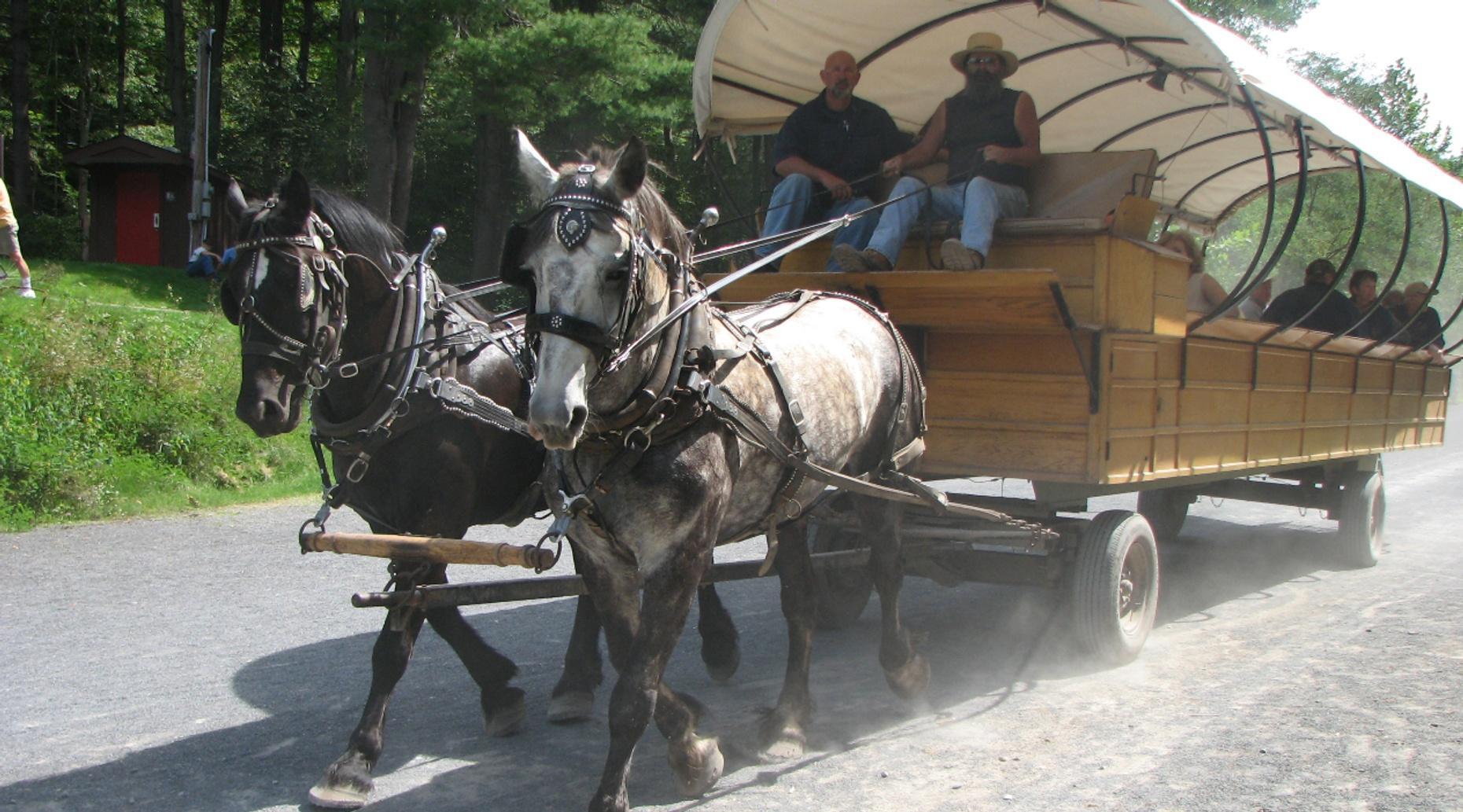 Nine-Passenger Wagon Ride in Dallas