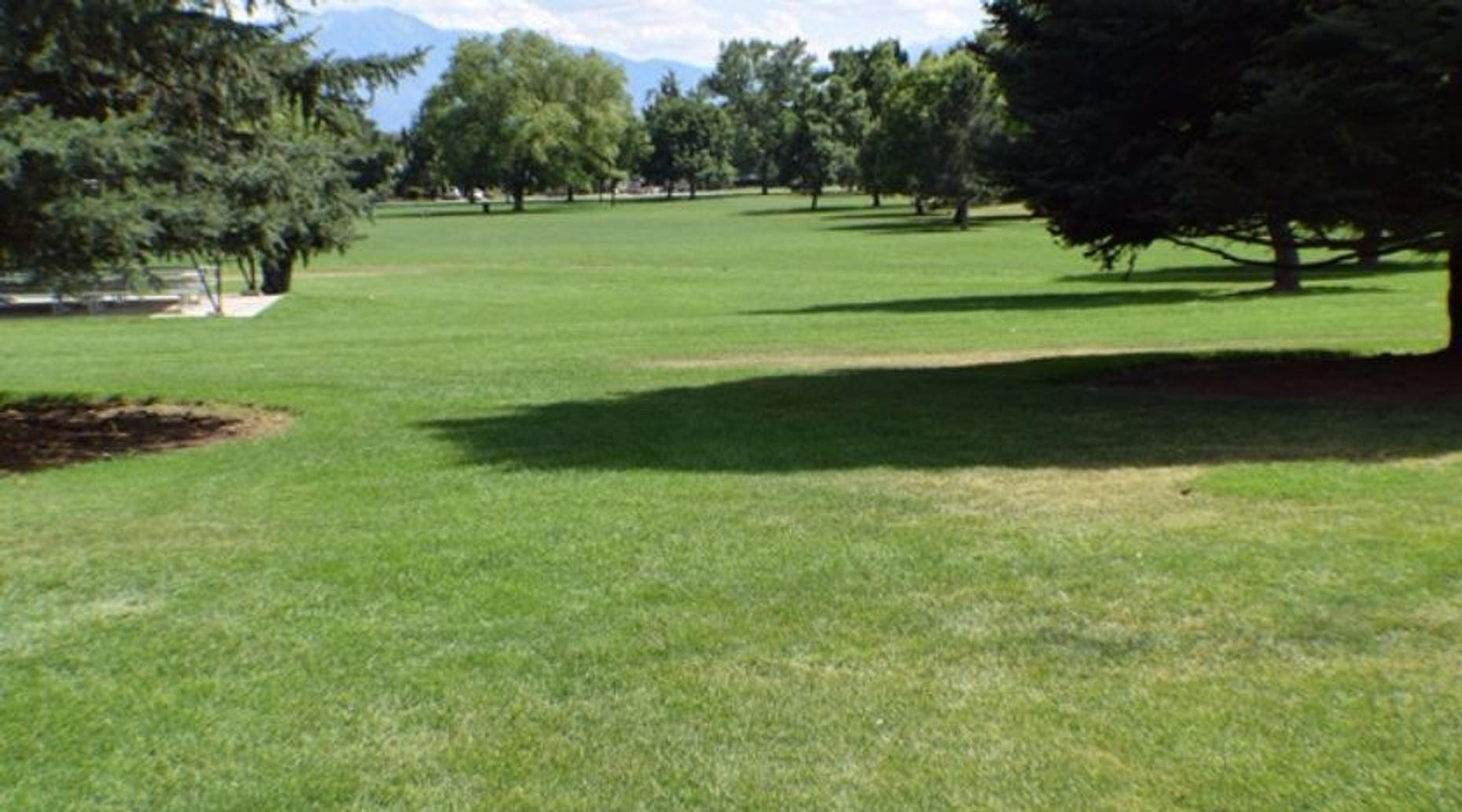 Drone Racing in the Park in Provo