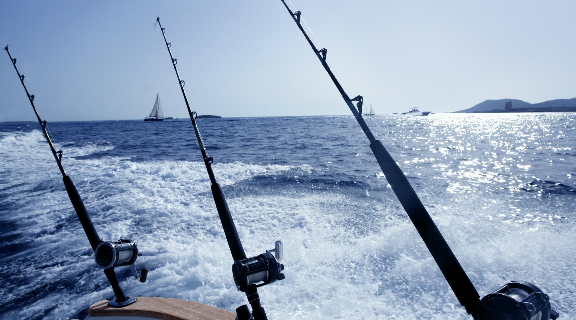 Full-Day Fishing Charter in the Gulf of Mexico