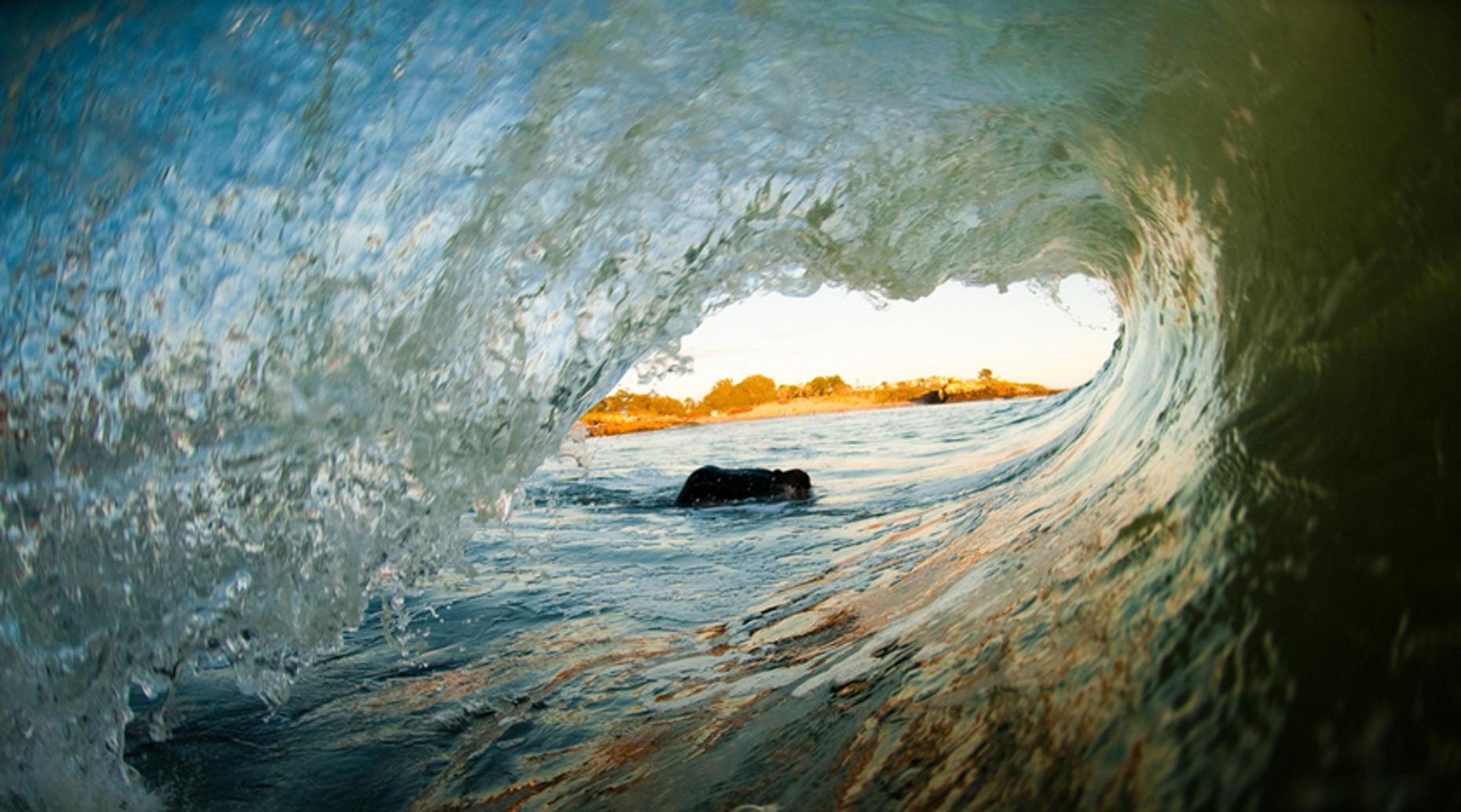 Two-Hour Semi-Private Surfing Lesson in Santa Cruz