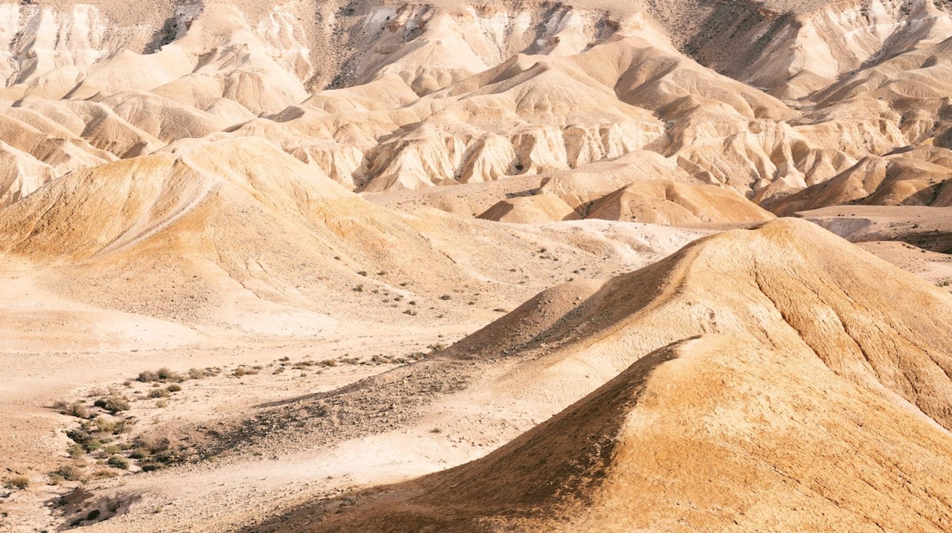 Wadi El Hitan Desert Tour From Giza