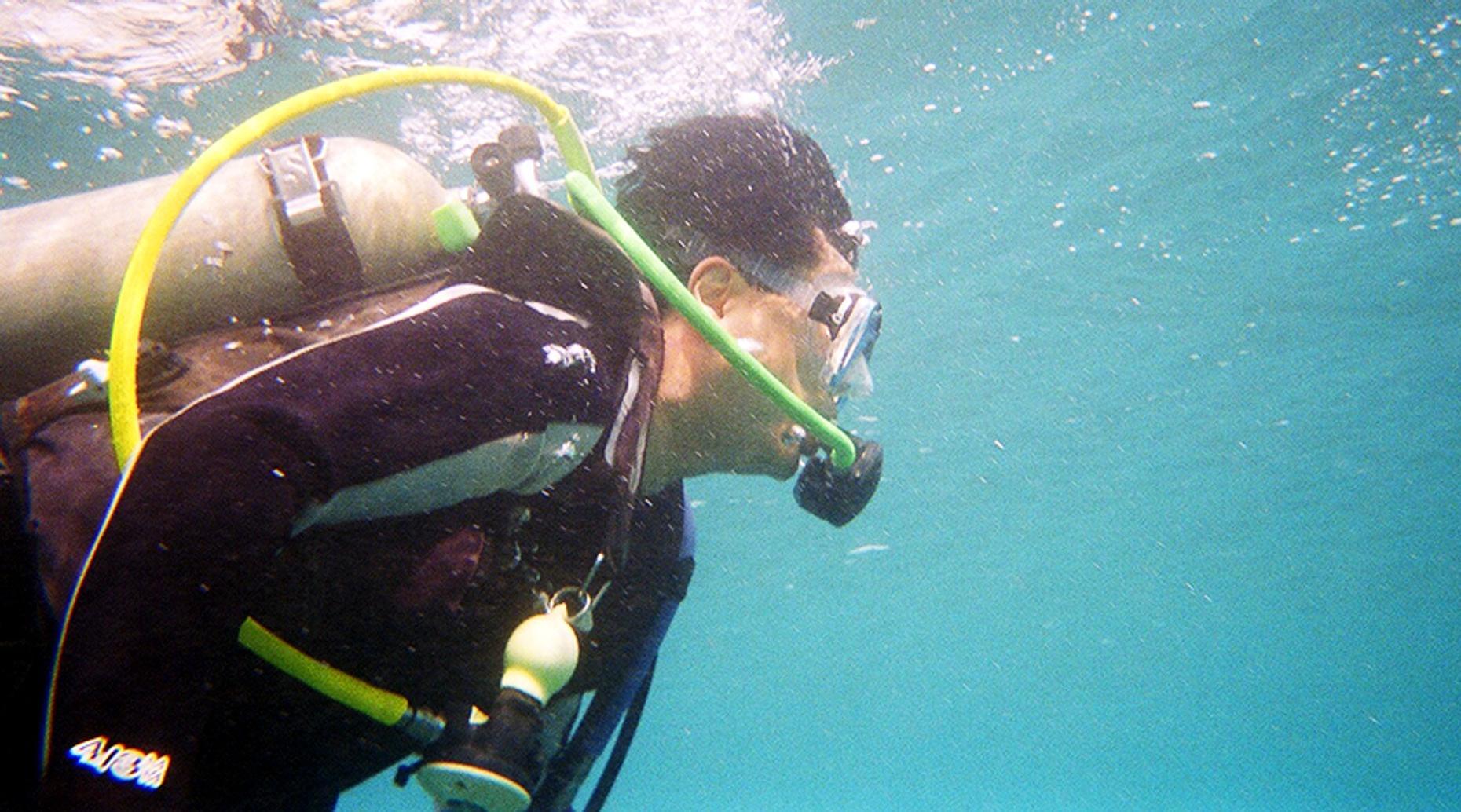 Beginner Scuba Dive in Tarpon Springs