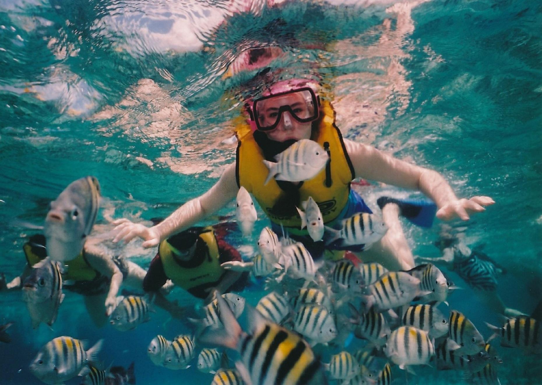 Bay of Banderas Snorkeling Adventure