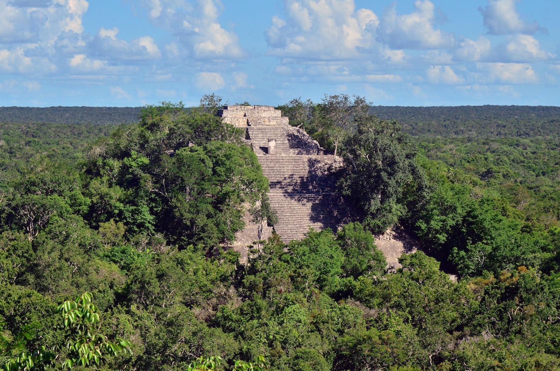 Guided Mayan City Tour of Calakmul