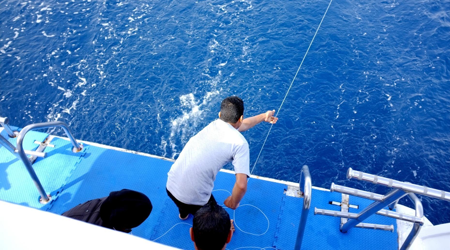 Offshore Fishing Trip near Galveston Island