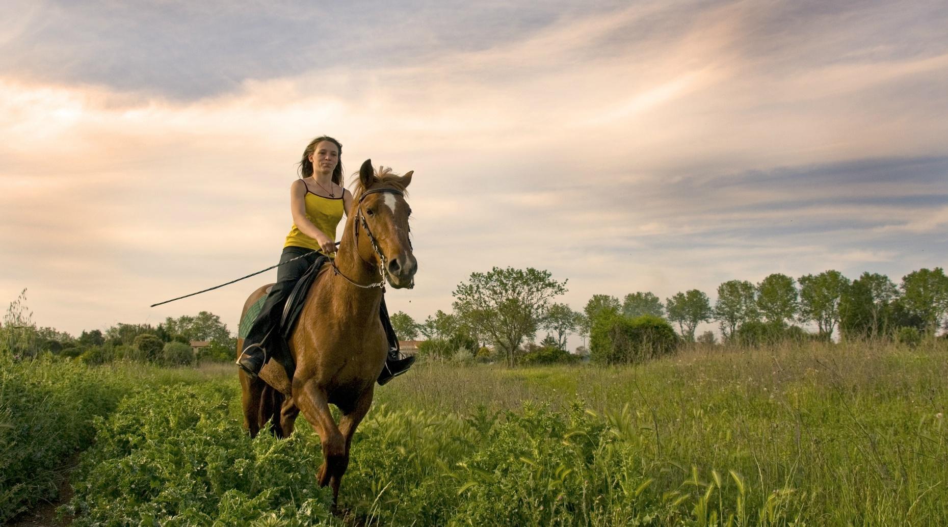 Zuma Canyon Horseback Ride in Agoura Hills
