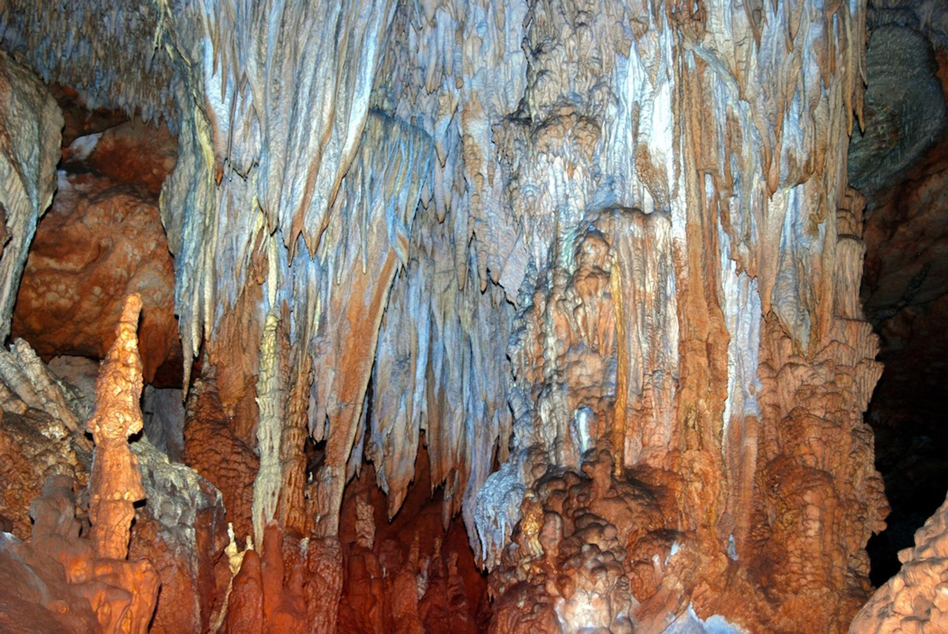 Guided Actun Tunichil Muknal Cave Tour in Belize