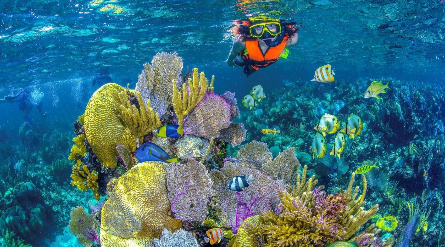 Snorkel Native Park Admission in Cancún