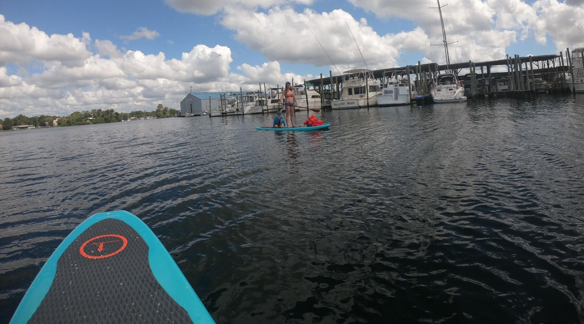 2 Hour 11' YOLO Hammerhead Paddle Board Rental and Manatee Viewing in Crystal River
