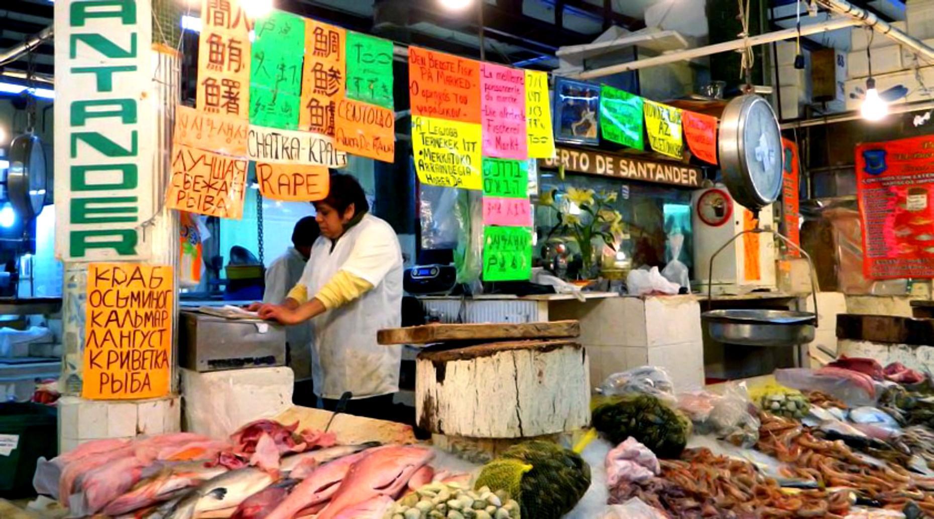 Mexico City Glimpse: Markets, Food, & Architecture Tour