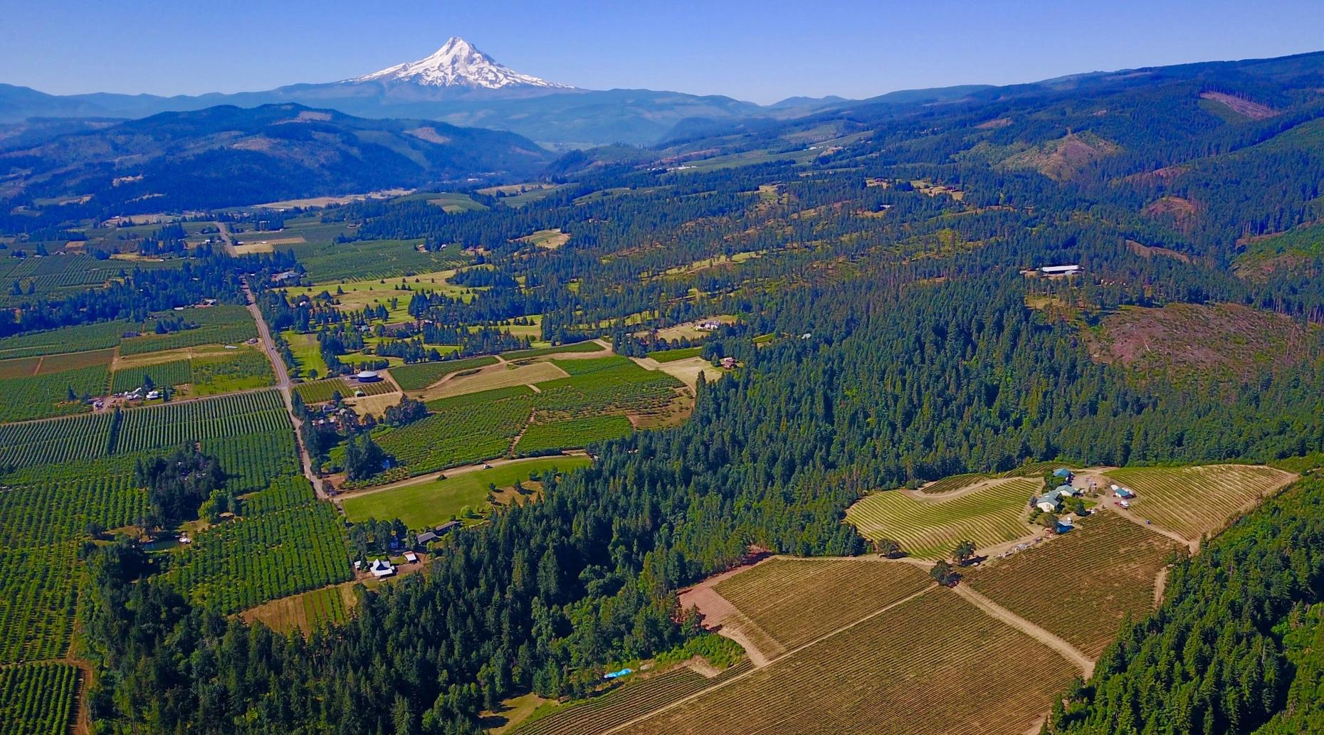 The Ultimate Wine Country Experience