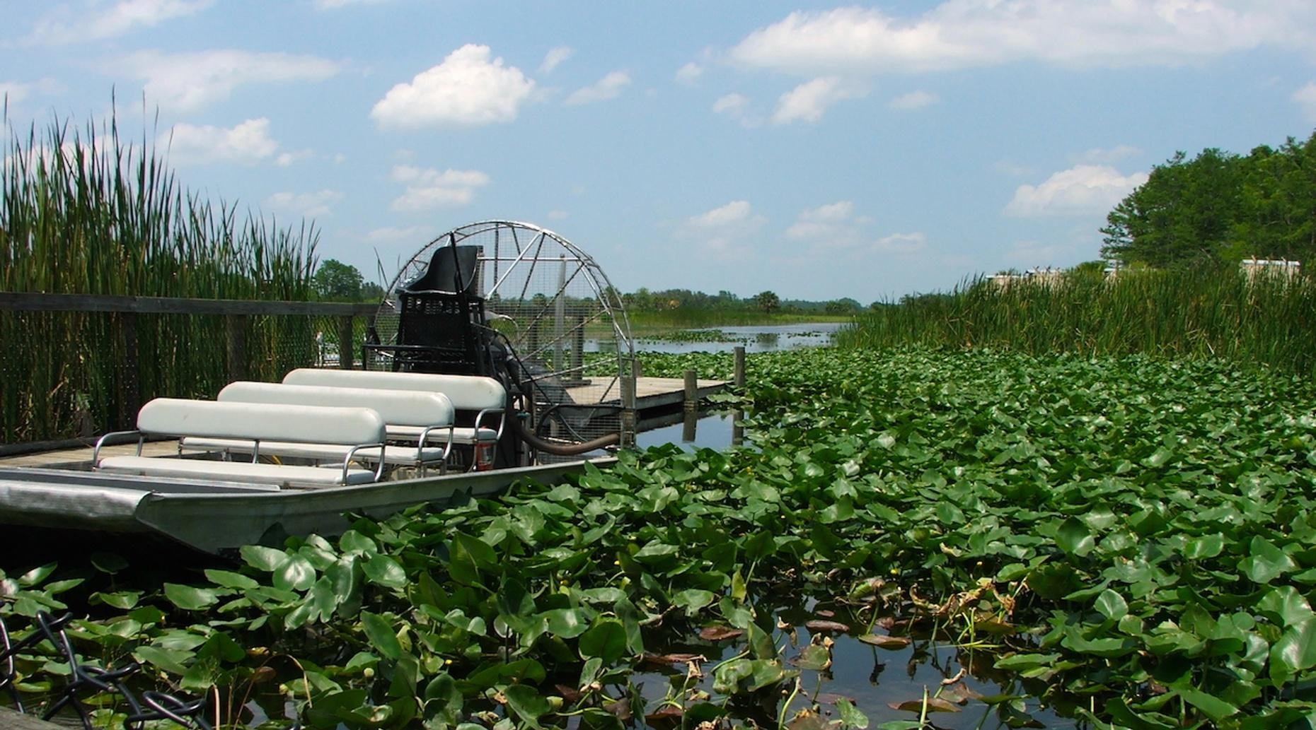 Private One & a Half Hour Everglades Airboat Tour