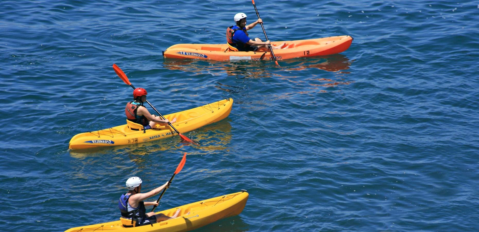 Dolphin Kayaking Tour in Hilton Head
