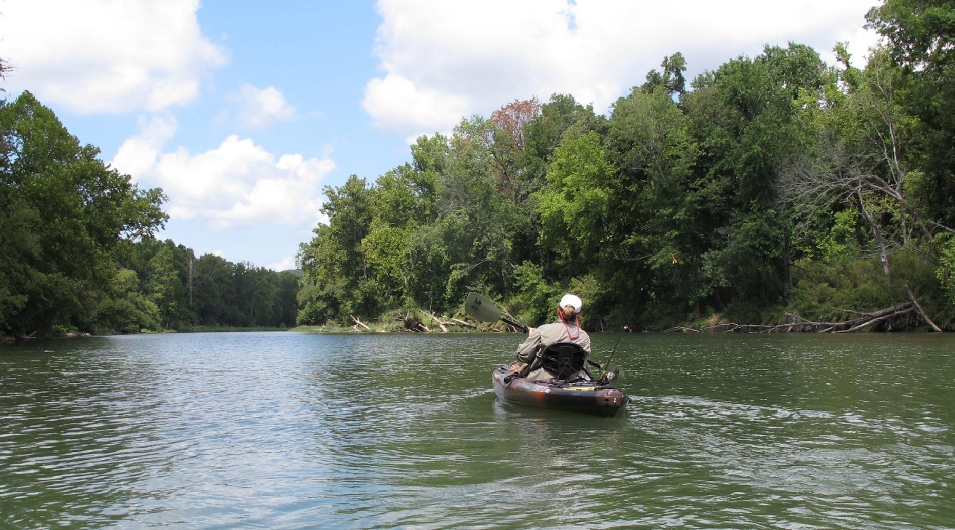 Buck Key Mangrove Kayaking Tour on Captiva Island