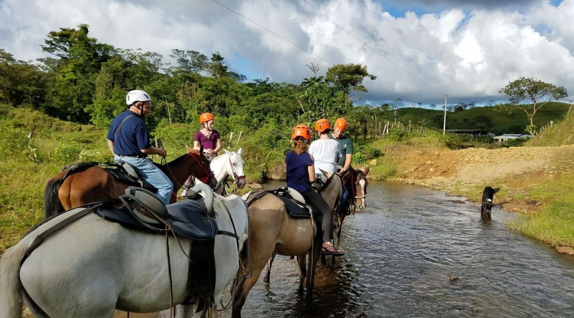 2-Hour Guided Horseback Riding Tour