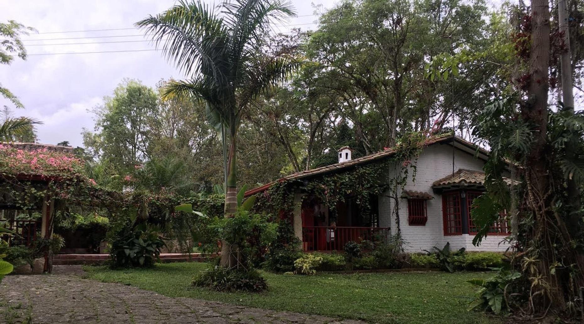 Full-Day Hacienda Coloma Coffee Farm Tour