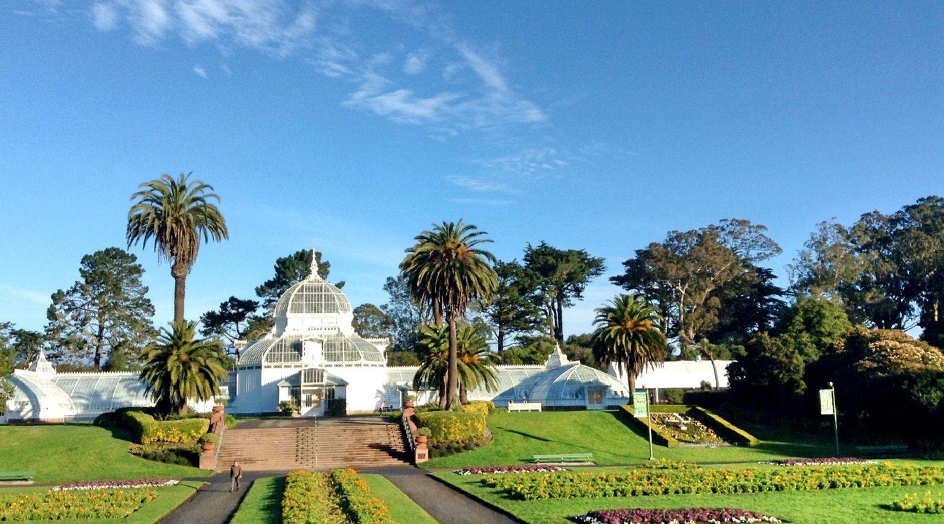 Golden Gate Park 10K Running Tour in San Francisco