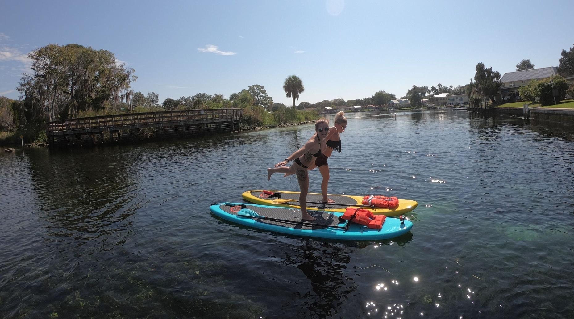2 Hour 12' YOLO Hammerhead Paddle Board Rental and Manatee Viewing