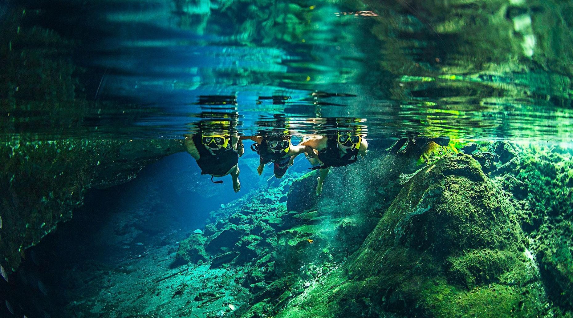 Jungla Maya Native Park Admission in Cancún