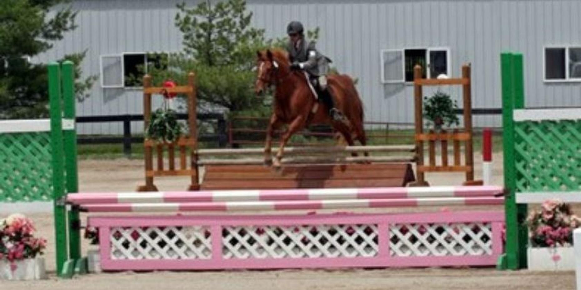 30-Minute Private Horseback Riding Lesson