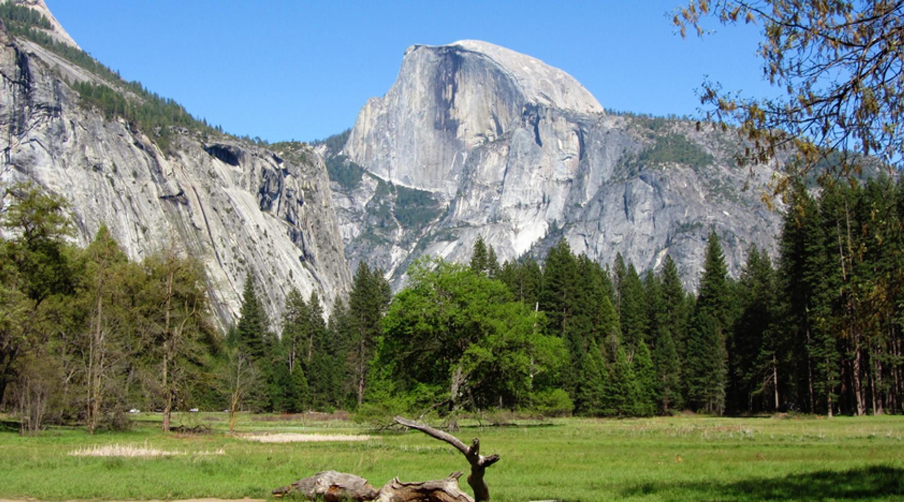 Fresno to Yosemite Private Shuttle Service