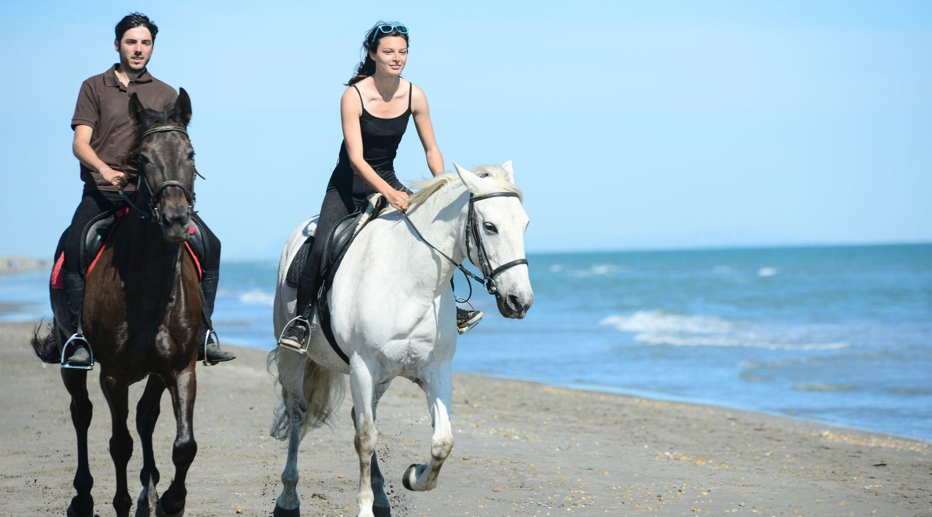 Guided Beach Horse Ride in Long Beach